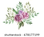 watercolor flowers.  beautiful... | Shutterstock . vector #678177199
