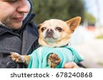 Stock photo pet domestic animal season and people concept happy man with his dog walking outdoors 678240868