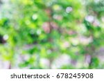 abstract bokeh green and yellow ... | Shutterstock . vector #678245908