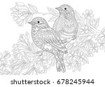 coloring page of two birds.... | Shutterstock .eps vector #678245944