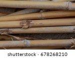 dry bamboo | Shutterstock . vector #678268210