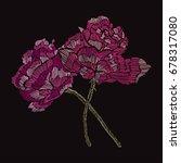 elegant bouquet with rose... | Shutterstock .eps vector #678317080