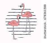 vector illustration. flamingo... | Shutterstock .eps vector #678361588