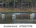 Adelaide  November 2016   Lake...