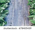 fresh aromatic herbs  mint on... | Shutterstock . vector #678405439