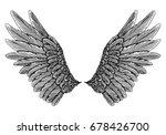 wings pair set. hand drawn...