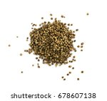 Small photo of Vitex Agnus Castus or Chasteberry. Chaste Berry Isolated on White Background
