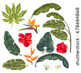 set of exotic tropical leaves... | Shutterstock .eps vector #678684868