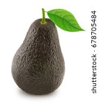 brown avocado with leaf... | Shutterstock . vector #678705484