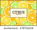 rectangle label on tropical... | Shutterstock .eps vector #678726418