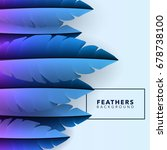 blue vector feathers   Shutterstock .eps vector #678738100