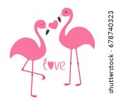 pink flamingo couple and heart. ... | Shutterstock . vector #678740323