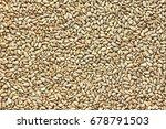 Sunflower Seeds Taken Closeup...
