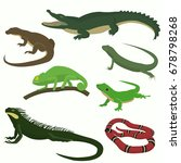 set of reptiles and amphibians... | Shutterstock .eps vector #678798268