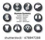set of human systems icon .... | Shutterstock .eps vector #678847288