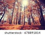 autumn landscape in the city... | Shutterstock . vector #678891814