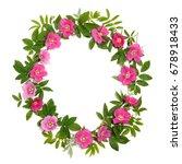 round flower frame of rose hips. | Shutterstock . vector #678918433