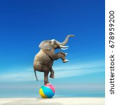 an elephant on a beach ball on... | Shutterstock . vector #678959200