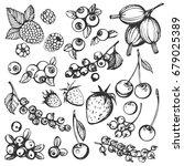 vector set of hand drawn... | Shutterstock .eps vector #679025389