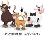 cartoon cow  calf and bull. cow ... | Shutterstock .eps vector #679072753