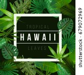 vector tropical leaves on black ... | Shutterstock .eps vector #679072969