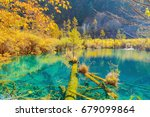 trees by the colorful lake at... | Shutterstock . vector #679099864