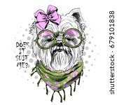 vector dog with green glasses ... | Shutterstock .eps vector #679101838