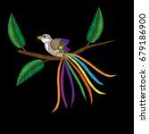 fancy bird on the brunch...   Shutterstock .eps vector #679186900