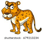 wild cheetah with angry face... | Shutterstock .eps vector #679213234