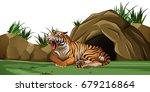 tiger in zoo enclosure | Shutterstock .eps vector #679216864