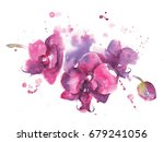 drawing with watercolor paints... | Shutterstock . vector #679241056