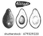 sketch ink vintage avocado set  ... | Shutterstock .eps vector #679329220