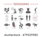 tapeworms. symptoms  treatment. ...   Shutterstock .eps vector #679329583