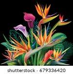 tropical arrangement with... | Shutterstock . vector #679336420