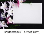 white blank condolence card... | Shutterstock . vector #679351894