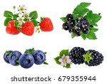 collection of berries isolated... | Shutterstock . vector #679355944