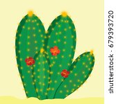 green cactus with flowers on... | Shutterstock . vector #679393720
