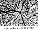 old wood rings saw cut tree... | Shutterstock .eps vector #679397608