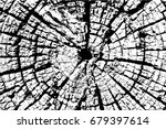old wood rings saw cut tree... | Shutterstock .eps vector #679397614