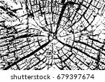 old wood rings saw cut tree... | Shutterstock .eps vector #679397674