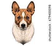 the dog breed basenji head... | Shutterstock .eps vector #679400098