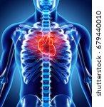 3d illustration of heart   part ...   Shutterstock . vector #679440010
