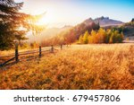 birch forest in sunny afternoon ... | Shutterstock . vector #679457806
