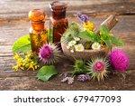 tincture bottles and healing... | Shutterstock . vector #679477093