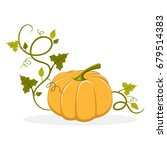 big ripe pumpkin with swirly... | Shutterstock .eps vector #679514383