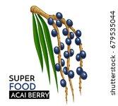 acai berry vector icon. healthy ... | Shutterstock .eps vector #679535044
