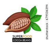 cocoa beans vector icon.... | Shutterstock .eps vector #679536394