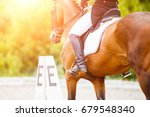 close up image of horse with... | Shutterstock . vector #679548340