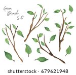 hand drawn watercolor green... | Shutterstock . vector #679621948