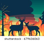 forest wildfire with deer and... | Shutterstock .eps vector #679636063